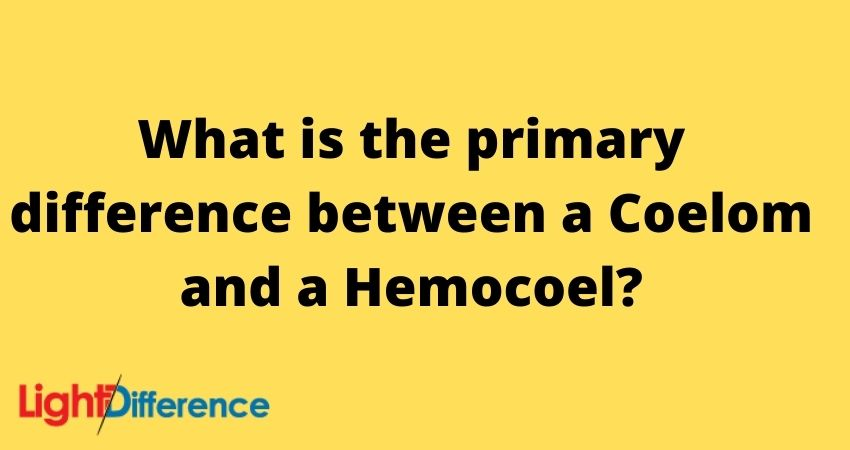 What is the primary difference between a Coelom and a Hemocoel