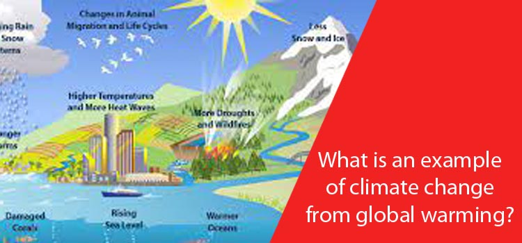 What is an example of climate change from global warming